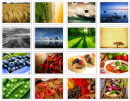 Free Image Gallery Plug-Ins