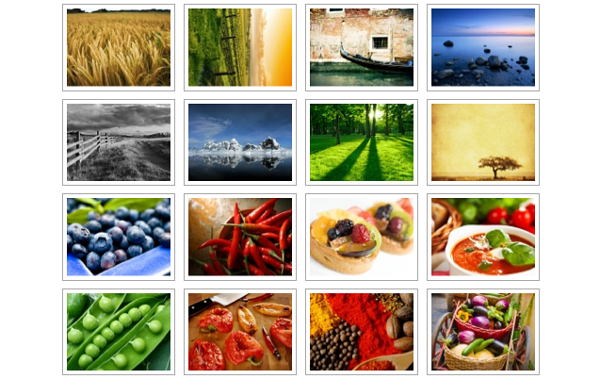 Top 6 Free WP Image Gallery Plugins that Allow You to Do More With Website Images